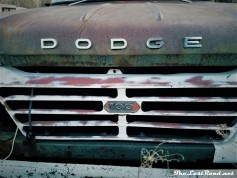 1962 Dodge D100 3